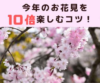 今年のお花見を 10倍楽しむコツ!